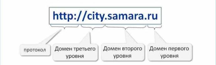 Все составляющие доменного имени.
